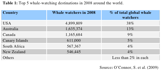 Whale watchers