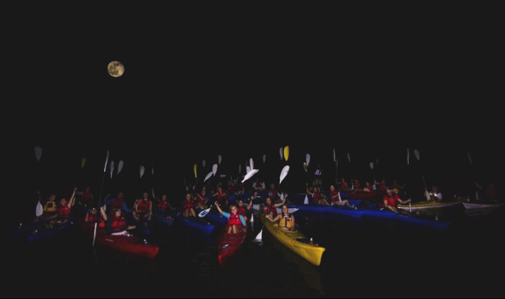 kayak de mer ecole ksf montreal