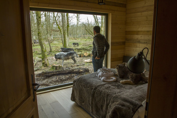 jack_london_lodge_-_crédit_photo_morgane_bricard_parc_ste_croix_2014_-_dormir_au_parc_pour_les_thematiques_lodges