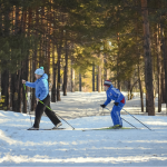 Tendances et enjeux du tourisme hivernal