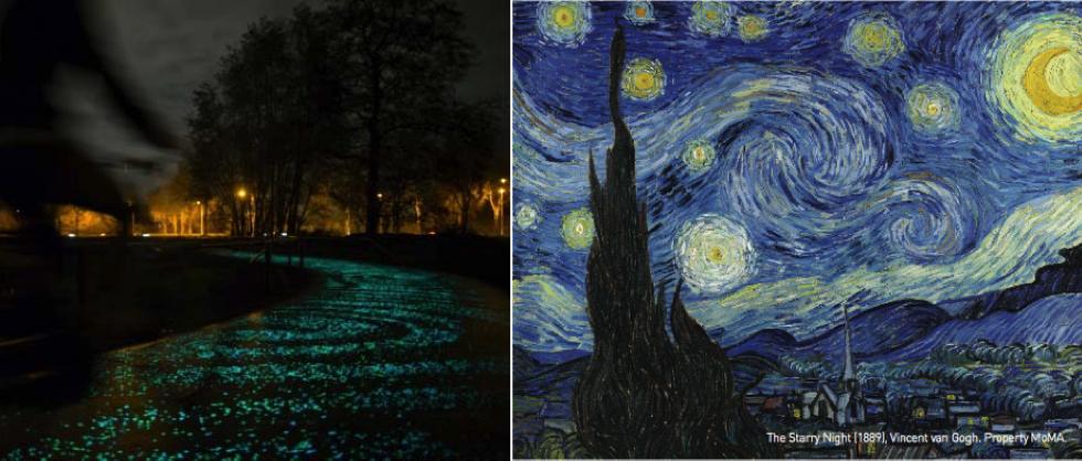 Van Gogh-Roosegaarde