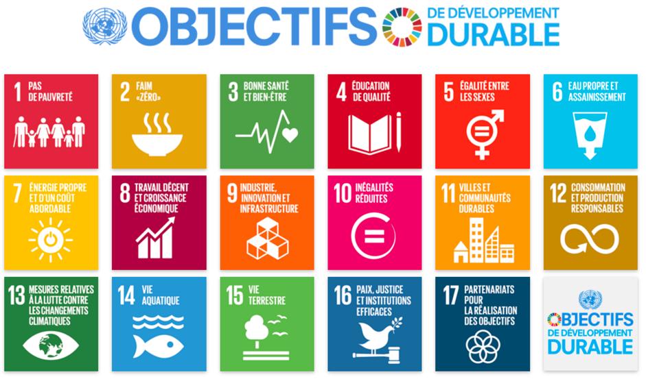 Programme-des-Nations-Unies-pour-le-developpement