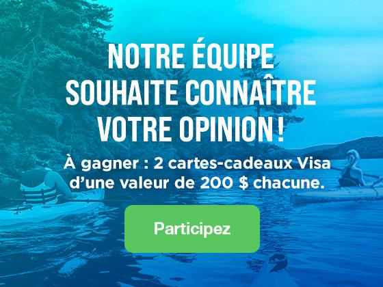 Satisfaction liée au Réseau de veille en tourisme
